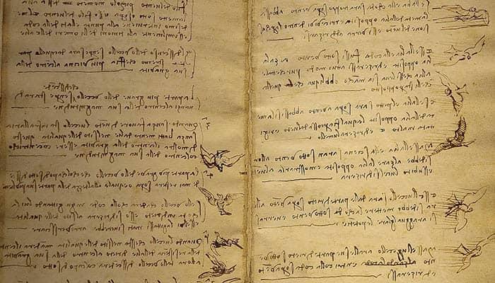 Codex del vuelo de las aves